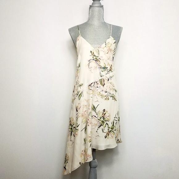 255a59ec211c2 NEW Haute Hippie Waterfall Floral Silk Slip Dress